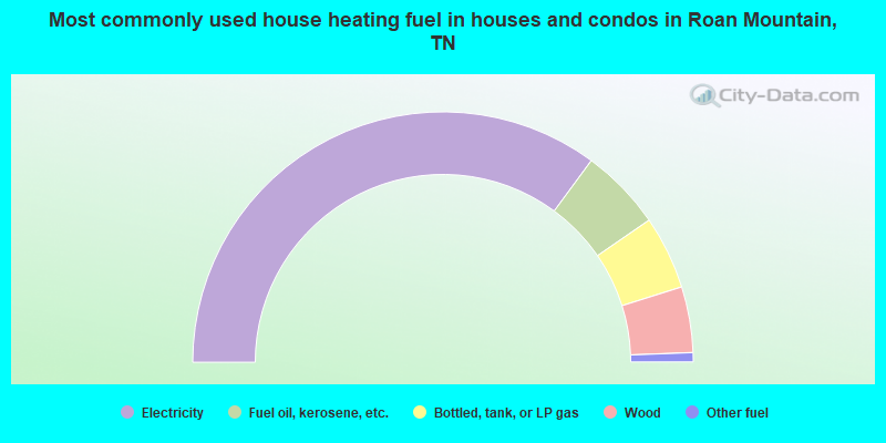 Most commonly used house heating fuel in houses and condos in Roan Mountain, TN