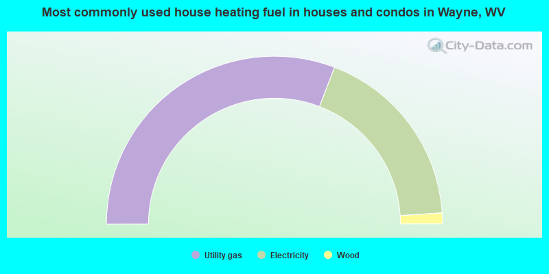 Most commonly used house heating fuel in houses and condos in Wayne, WV