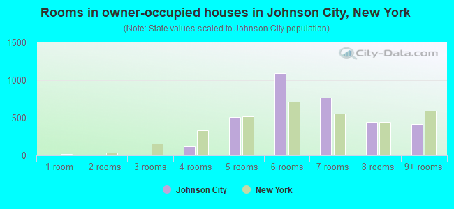Rooms in owner-occupied houses in Johnson City, New York
