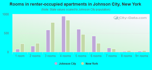 Rooms in renter-occupied apartments in Johnson City, New York