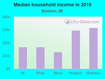 Baldwin Michigan Mi Income Map Earnings Map And Wages Data