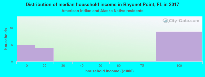 Bayonet Point household income for American Indian and Alaska Native householders