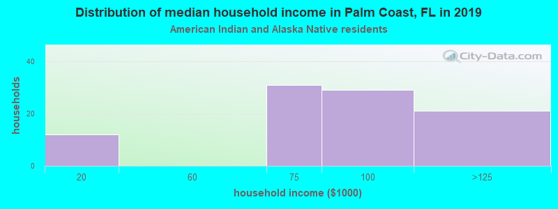 Palm Coast household income for American Indian and Alaska Native householders