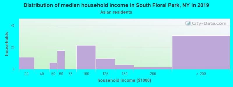South Floral Park household income for Asian householders