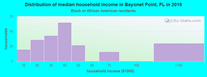 Bayonet Point household income for Black householders