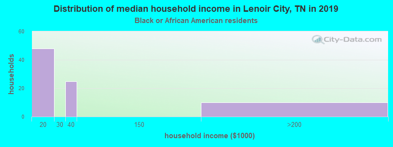 Lenoir City household income for Black householders