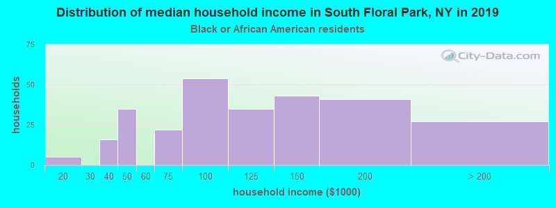 South Floral Park household income for Black householders