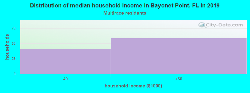 Bayonet Point household income for Two or more races householders