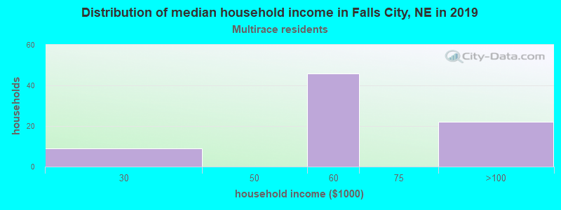Falls City household income for Two or more races householders