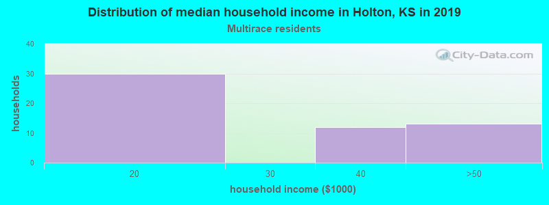 Holton household income for Two or more races householders