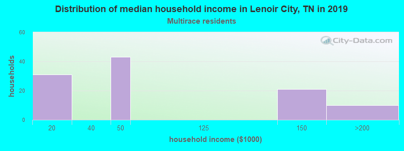 Lenoir City household income for Two or more races householders