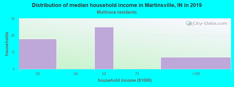 Martinsville household income for Two or more races householders