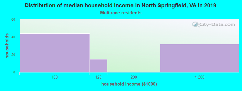 North Springfield household income for Two or more races householders