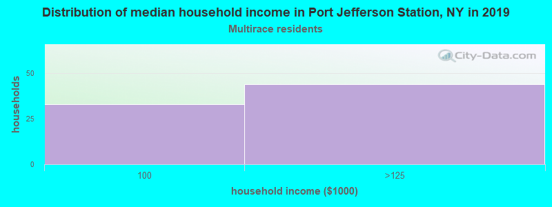 Port Jefferson Station household income for Two or more races householders