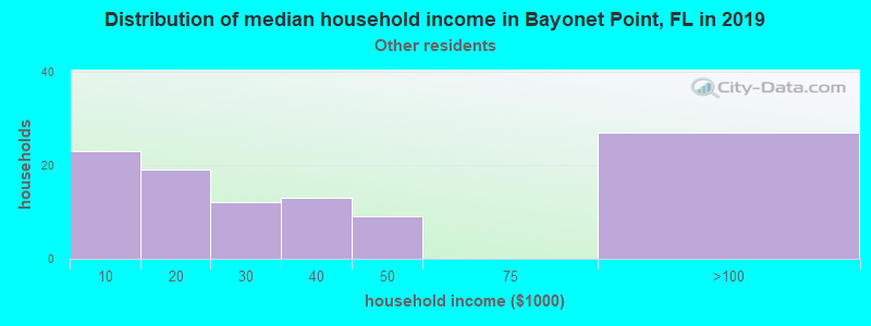Bayonet Point household income for Some other race householders