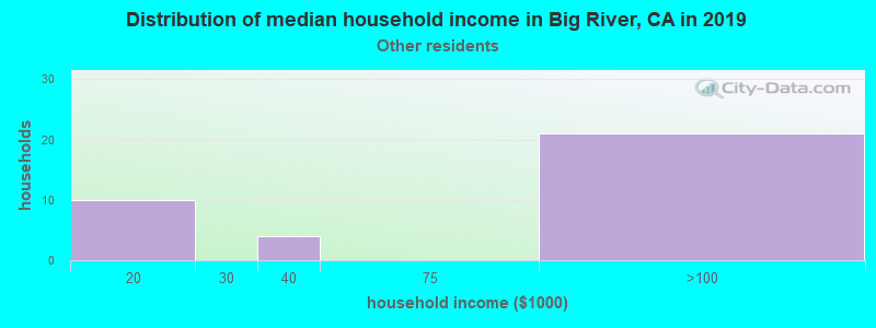Big River household income for Some other race householders