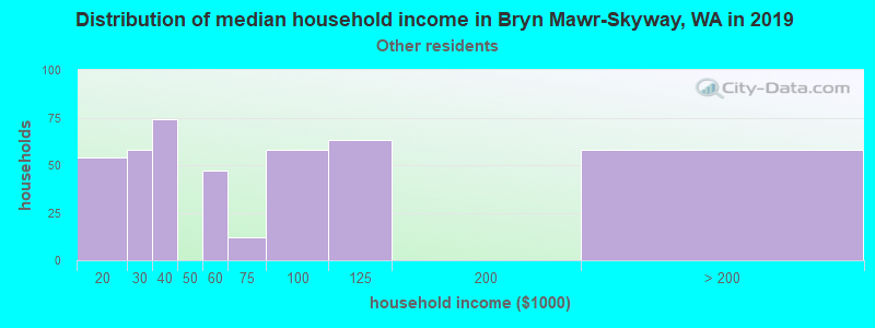 Bryn Mawr-Skyway household income for Some other race householders