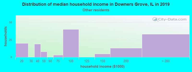 Downers Grove household income for Some other race householders