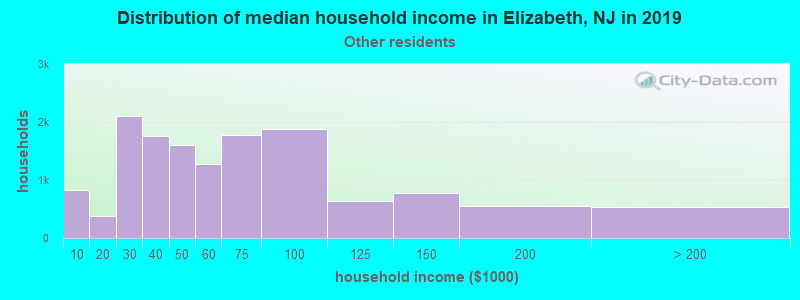 Elizabeth household income for Some other race householders