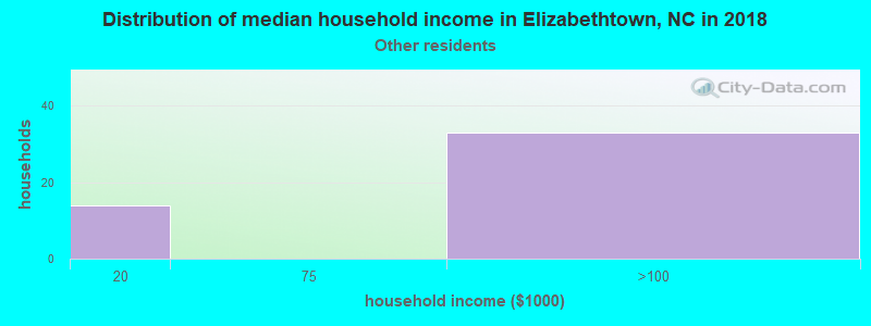 Elizabethtown household income for Some other race householders
