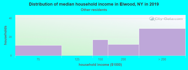 Elwood household income for Some other race householders