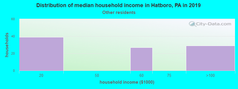 Hatboro household income for Some other race householders