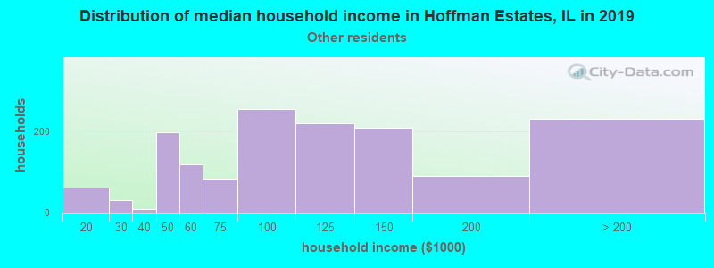 Hoffman Estates household income for Some other race householders