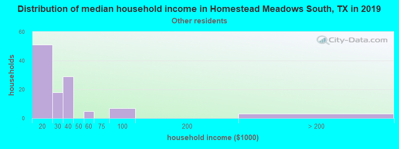 Homestead Meadows South household income for Some other race householders