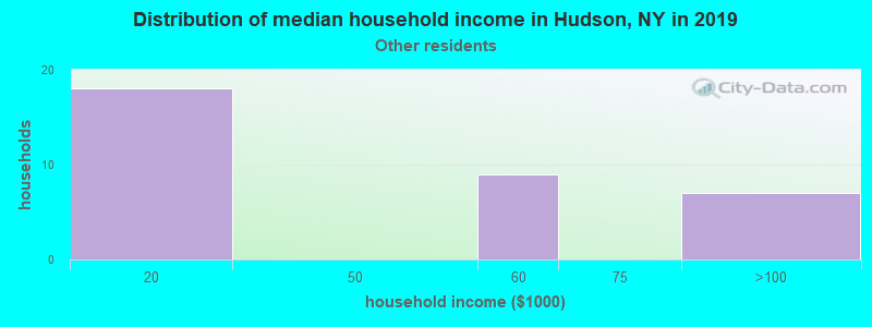 Hudson household income for Some other race householders