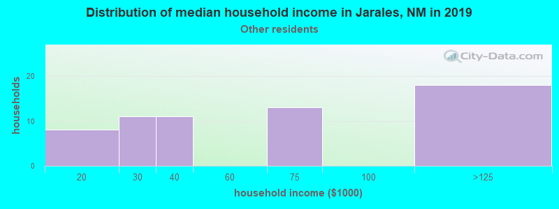 Jarales household income for Some other race householders