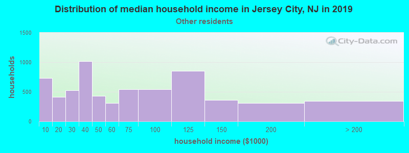 Jersey City household income for Some other race householders