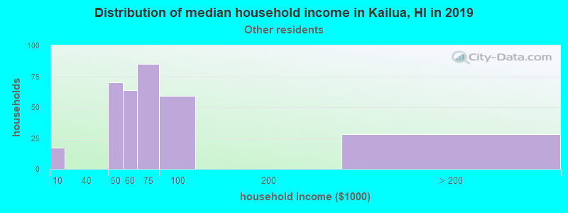 Kailua household income for Some other race householders