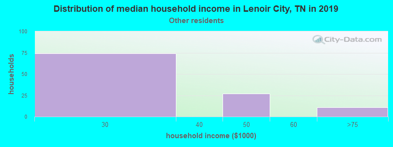 Lenoir City household income for Some other race householders