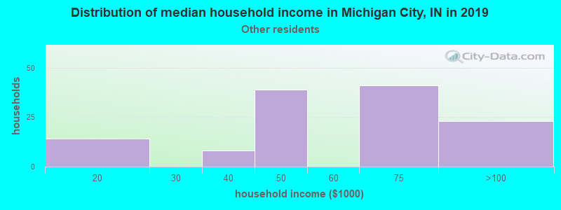 Michigan City household income for Some other race householders