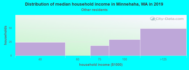 Minnehaha household income for Some other race householders