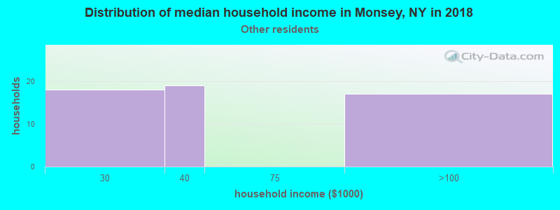 Monsey household income for Some other race householders