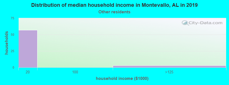Montevallo household income for Some other race householders