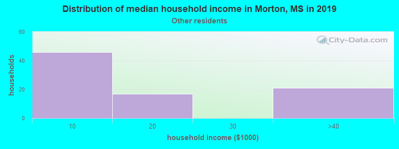 Morton household income for Some other race householders