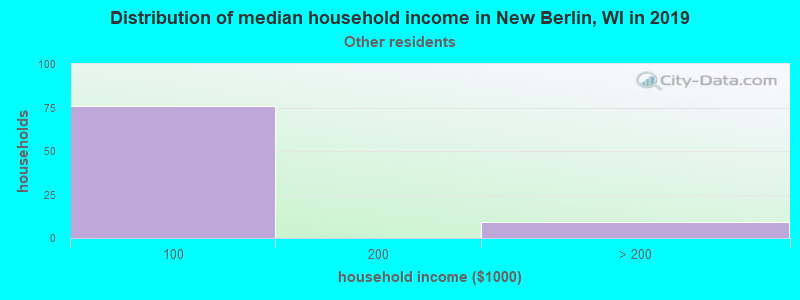 New Berlin household income for Some other race householders