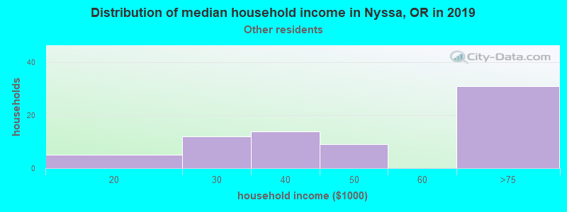 Nyssa household income for Some other race householders