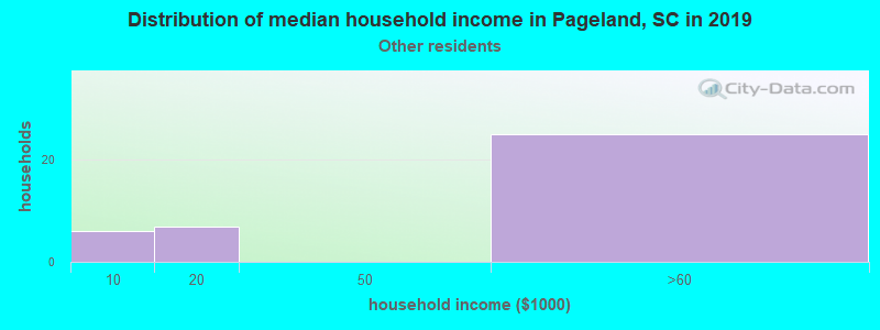 Pageland household income for Some other race householders