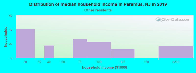 Paramus household income for Some other race householders