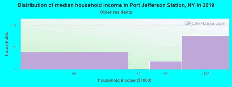 Port Jefferson Station household income for Some other race householders