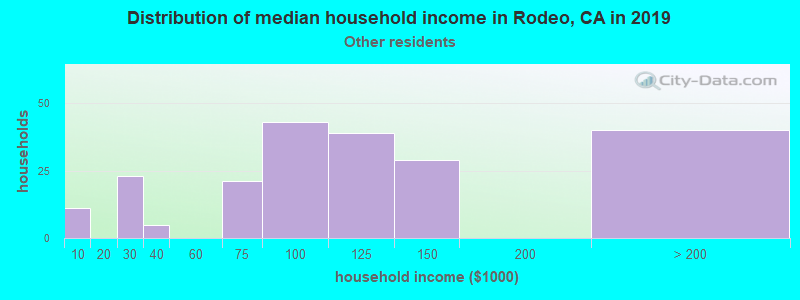 Rodeo household income for Some other race householders