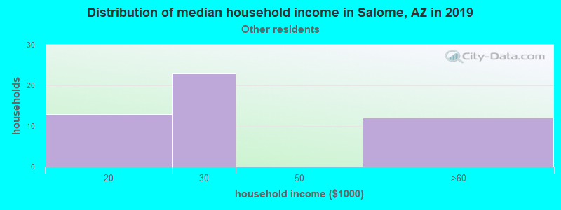 Salome household income for Some other race householders