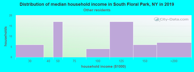 South Floral Park household income for Some other race householders