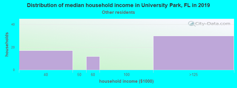 University Park household income for Some other race householders