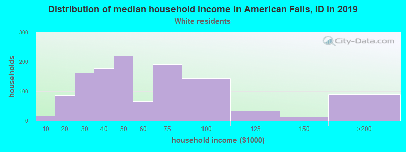 American Falls household income for White non-Hispanic householders