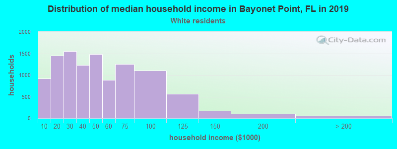 Bayonet Point household income for White non-Hispanic householders
