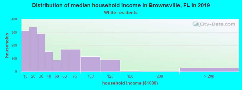 Brownsville household income for White non-Hispanic householders